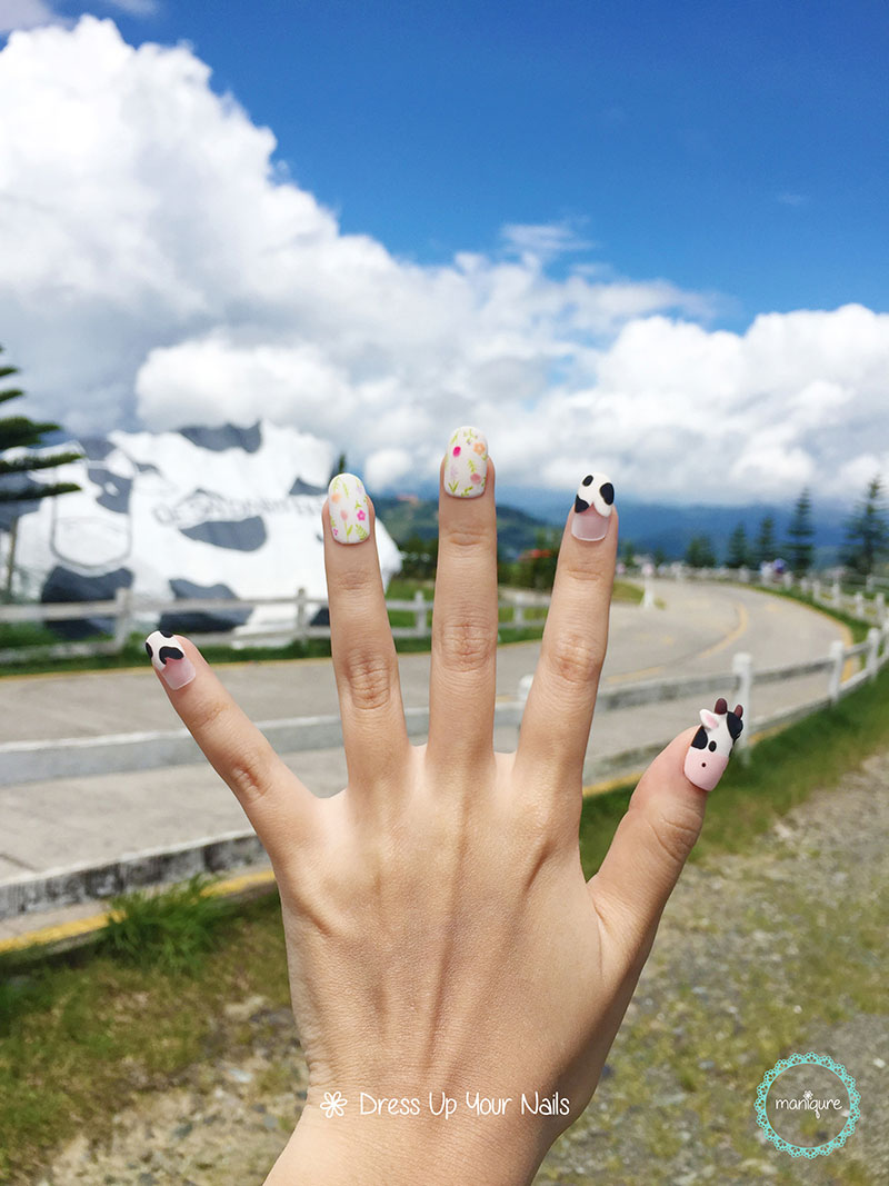Dairy Farm Cow Nails